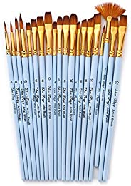 Goolsky 20pcs Draw Paint Brushes Set Kit Artist Paintbrush Multiple Mediums Brushes with Nylon Hair for Artist