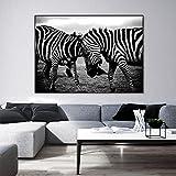 NIMCG Motif de zèbre Mur Toile Art Noir et Blanc Pop Art Toile Peinture Affiche pour...