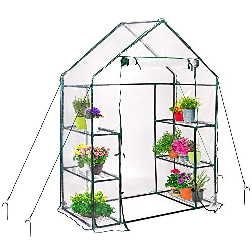 Serra da giardino portatile, 143 x 73 x 195 cm - 6 ripiani con telo in pe trasparente, resistente e impermeabile - con 4 corde, 4 picchetti| per piante frutta verdura erbe fiore balcone.