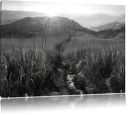 paddy-plantation-en-asie-effet-de-charbon-de-bois-format-100x70-sur-toile-xxl-enormes-photos-complet
