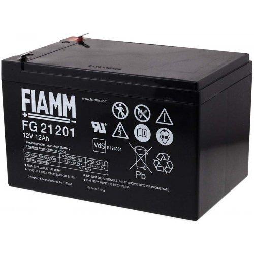 FIAMM Batteria ricaricabile da cambio per auto per bambini auto per bambini Hummer auto per bambini Jeep 12V 12Ah