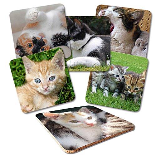 ADDIES Glas-Untersetzer 6-TLG.Set Bedruckt Katzen-Motive-01 in hochwertiger Klarsicht-Geschenkbox und Korkrückseite, Tier-Motiv