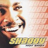 Hot Shot (UK Edition With 2 Bonus Tracks & 2 Vids)