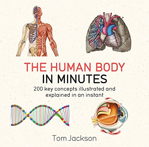 The Human Body in Minutes (English Edition)