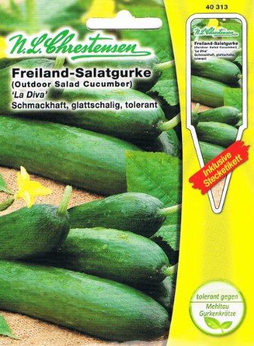 freiland-salatgurke-la-diva-portion-inkl-stecketikett