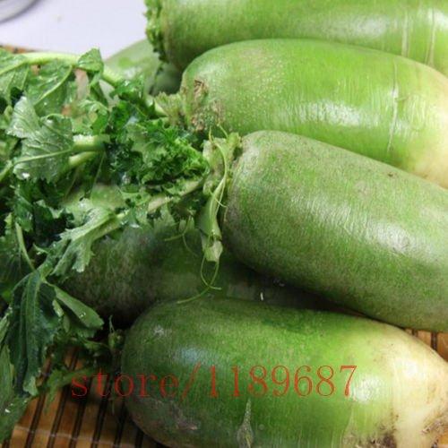 100pcs vert doux graines de radis, fruits légumes Vitamine C Graines alimentaires, plantes de maison jardin