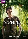 Wonders Life kostenlos online stream