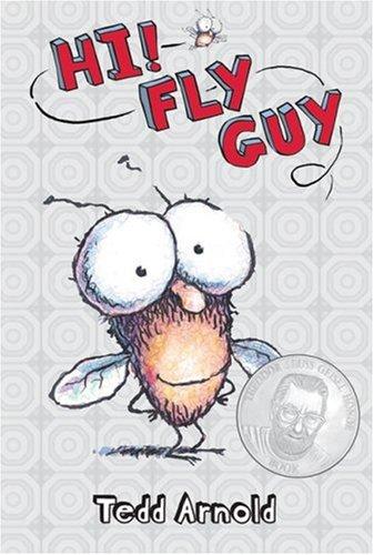 hi-fly-guy