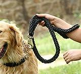 Qinlee Nylon de chien corde Noir Nylon de Chien Corde d'escalade pour une maîtrise parfaite Traction Animaux Promenade Course