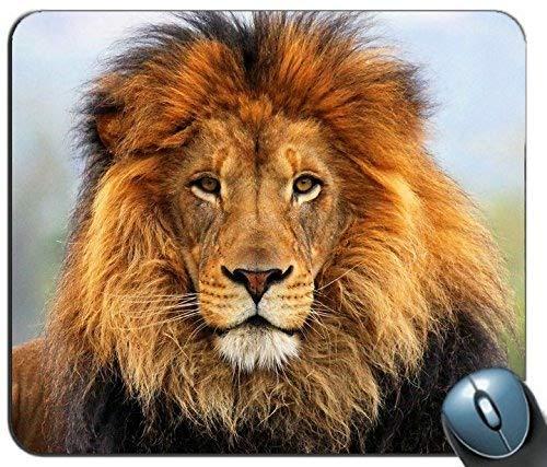 Mauspad Gaming Maus Matte Gel-Gummi für PC, Gesicht Augen Lion Fur Mane 85403 Personalisierte Rechteck Mauspad, Gedruckt Rutschfeste Gummi Komfortable Kundenspezifische Computer-Mausunterlage