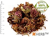 ROT-KLEE 50g Trifolium pratense, flower (blumen)