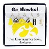 Wine Things University of Iowa Painted Glassware Charms