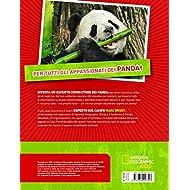 Panda-Absolute-expert