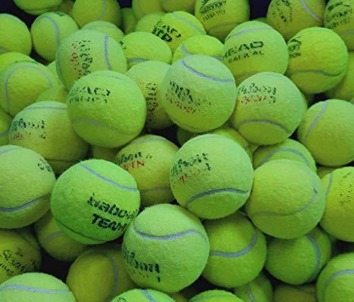 30 gebrauchte Tennisbälle - Ballspiele/Hundespielzeug - von großen Herstellern wie Slazenger, Head, Dunlop Wilson usw.