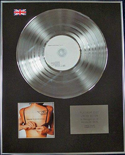 Century Music Awards Aerosmith-Limited Edition CD Platinum Disc-Young Lust (Anthologie)