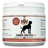 Canis Motus forte - Das Gelenkpulver der Extraklasse für den Hund