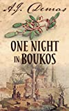 One Night in Boukos (English Edition)