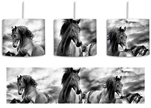 Monocrome, Western Pferde Cowboy inkl. Lampenfassung E27, Lampe mit Motivdruck, tolle Deckenlampe, Hängelampe, Pendelleuchte - Durchmesser 30cm - Dekoration mit Licht ideal für Wohnzimmer, Kinderzimmer, Schlafzimmer (Western-stil Lampenschirme)