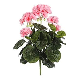 MICA Decorations 975264 – Flores, geranios Grandes, Color Rosa