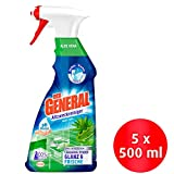 Der General Aloe Vera, Allzweckreiniger Spray, Sprühflasche, (5 x 500 ml)