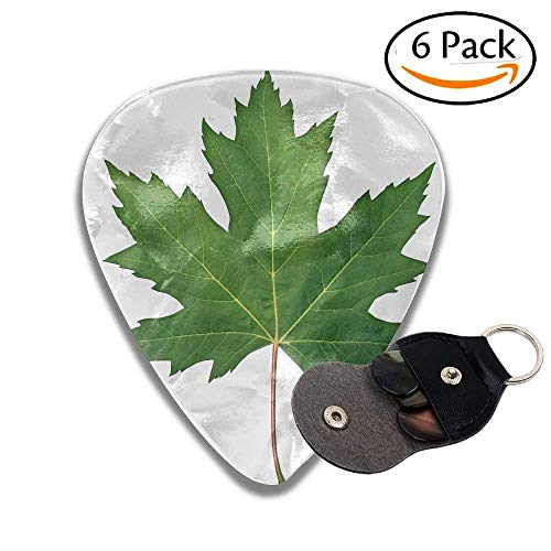 Green Maple Leaf (Green Maple Leaf As A Spring And Summer Seasonal Themed Nature Concept Also An Icon Of The Fall Colorful Celluloid Guitar Picks Plectrums For Guitar Bass .71mm 6 Pack)