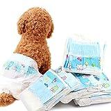 Feli546Bruce Pañales para Mascotas, 10 Piezas, Desechables, para Perros, Pantalones de Papel, Ropa Interior de pañales, Accesorios para Perros