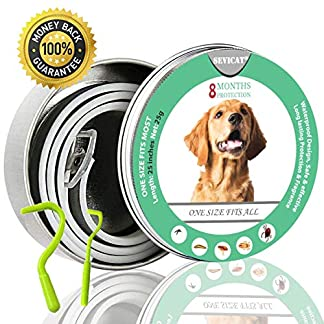 sevicat [2018 upgrade] dog anti flea & tick collar 6 months effectiveness protection for dogs and puppies, adjustable fits (for dog) SEVICAT [2018 Upgrade] Dog Anti Flea & Tick Collar 6 Months Effectiveness Protection for Dogs and Puppies, Adjustable Fits (For Dog) 51GYT0xLP9L