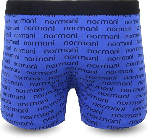 4 × Herren Boxershorts Retropants Stretch Baumwolle - verschiedene Farben - exkluxive Motive Blue Banner