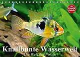 Knallbunte Wasserwelt. Die Welt der Fische (Tischkalender 2017 DIN A5 quer): Die bunte Welt der Fische und Wasserbewohner (Geburtstagskalender, 14 Seiten ) (CALVENDO Tiere)