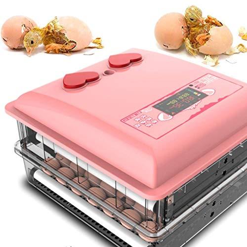 Wiskeo adorabile incubatrice uova, girauova automatico, controllo della temperatura, display lcd, intelligente, pulcini gallina anatra oca uccelli 30 uova