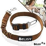 BELISY Hunde Sicherheitsgurt fürs Auto I elastische Ruckdämpfung I Braun