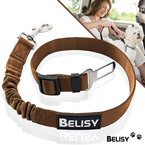 BELISY Hunde Sicherheitsgurt fürs Auto I elastische Ruckdämpfung I Braun - Autos Modell Züge,