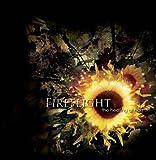 Songtexte von Fireflight - The Healing of Harms
