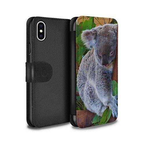 STUFF4 PU-Leder Hülle/Case/Tasche/Cover für Apple iPhone 5/5S / Wolf Muster / Wilde Tiere Kollektion Koala
