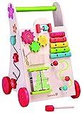 EverEarth - Lauflern-Spielzeug (EE30949)