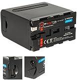 Baxxtar Pro Akku für Sony NP-F970 Plus (Black Series) 10500mAh - LG Cells Inside - mit Powerbank Funktion (USB Ausgang) und Battery Check