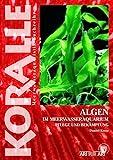 Algen im Meerwasseraquarium: Pflege und Bekämpfung (Art für Art / Meerwasser)