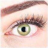 """Sehr stark deckende und natürliche grüne Kontaktlinsen SILIKON COMFORT NEUHEIT farbig """"Alice Green"""" + Behälter von GLAMLENS -"""