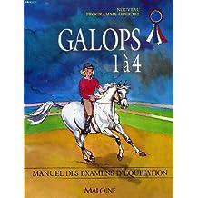 GALOPS 1 A 4. Manuel des examens d'équitation, Programme 1997