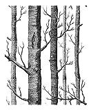 Unbekannt Birkenbaum-Muster-Vlies-Holz-Tapeten-Rolle Wandverkleidung Einfaches Tapetenpapier Für Wohnzimmer 10 * 0.53M