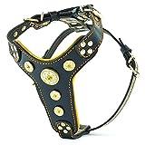 Bestia |Bijou| Leder Brustgeschirr für Kleine bis Mittelgroße Hunde. 100% Leder. Handgefertigt. Top Qualität