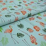 Hans-Textil-Shop Stoff Meterware Flamingo Palme Baumwolle