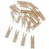Imported 20Pcs Mini Craft Clothes Pegs W...