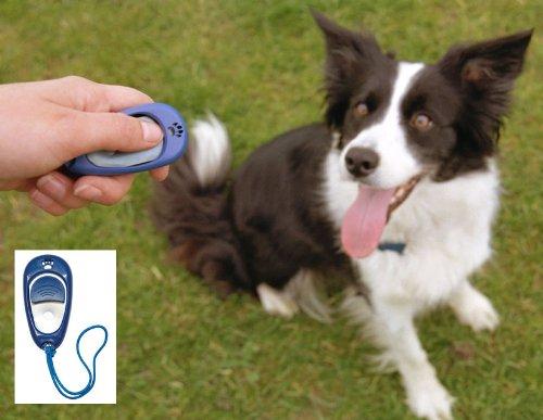 animal-club-clicker-per-addestramento-cani-aiuto-pp-0795804