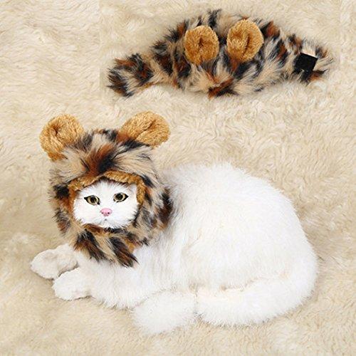 Löwenmähne Hund, Legendog Lion Mähne Kostüm Kreative Einstellbare Haustier Lustige Perücke Haustier Mähne für Hund Katze