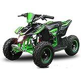 "Eco Mini Quad 800W Madox Premium 4"" 36V ATV Bike Pocket Miniquad Kinderquad Kinderfahrzeug"