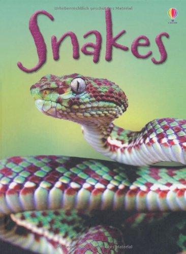 snakes-beginners