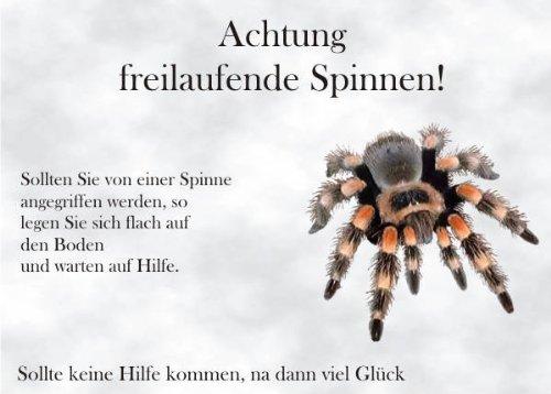 INDIGOS UG - Türschild FunSchild - SE02 DIN A4 für Spinne Spinnen Fans Schild - für Käfig, Zwinger, Haustier, Tür, Tier, Aquarium - aus hochwertigem Alu-Dibond beschriftet sehr stabil