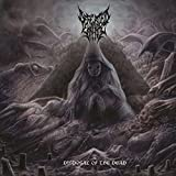 Disposal Of The Dead // Dharmata - Best Reviews Guide
