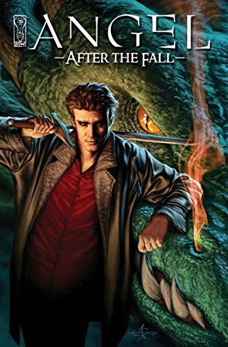 Angel: After The Fall Volume 1 HC: After the Fall v. 1 (Angel (IDW Hardcover))
